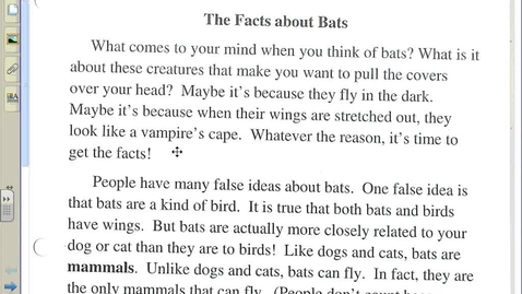 Thumbnail for entry The Facts About Bats