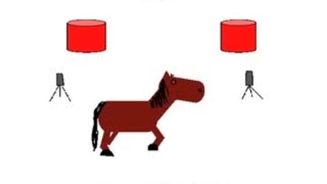 Thumbnail for entry Horses Barrel Racing