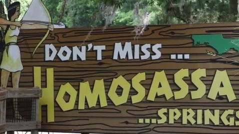 Thumbnail for entry Homosassa Springs