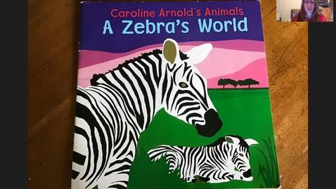Thumbnail for entry A Zebra's World