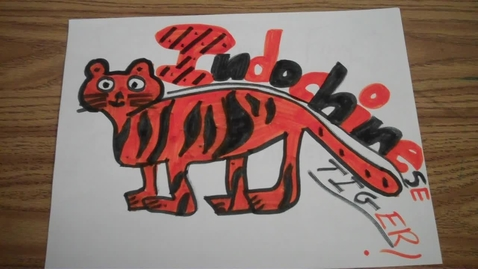 Thumbnail for entry Indochinese Tiger