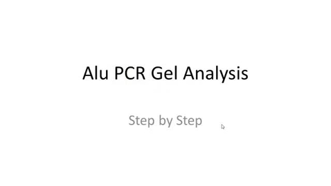 Thumbnail for entry PV-92 Alu Gel Calculations