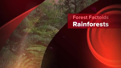 Thumbnail for entry Rainforest Factoids