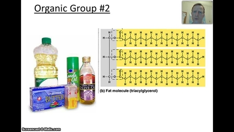 Thumbnail for entry Overview of Lipids