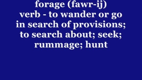 Thumbnail for entry Forage - BrainyFlix.com Vocab Contest