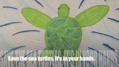 Thumbnail for entry Ayuda a las tortugas de mar
