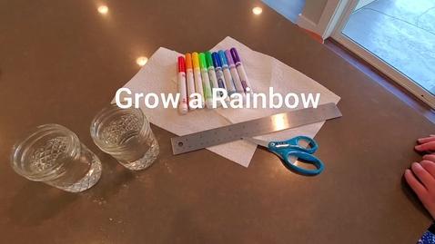 Thumbnail for entry Grow a Rainbow