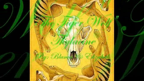 Thumbnail for entry Thylacine by Blanca and Elizabeth