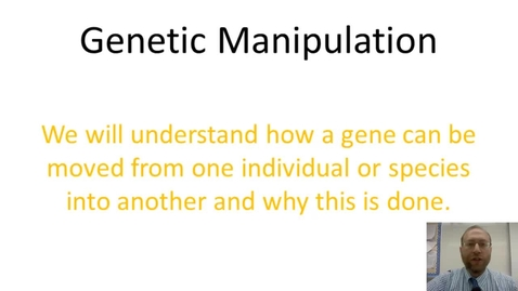 Thumbnail for entry Genetic Manipulation