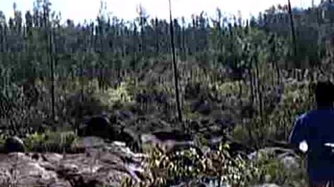 Thumbnail for entry Belize Trip