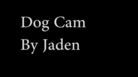 Thumbnail for entry The Dog Cam - WSCN 2015/2016