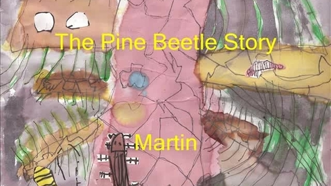 Thumbnail for entry Pine Beetle Martin