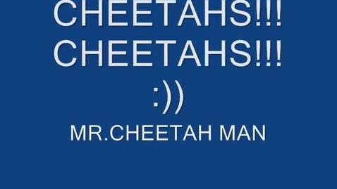 Thumbnail for entry Cheetahs