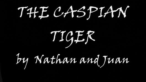 Thumbnail for entry The caspian tiger by Nathan and Juan