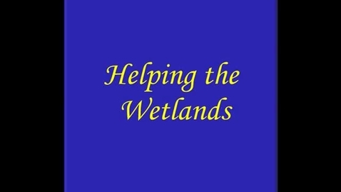 Thumbnail for entry Helping the Wetlands