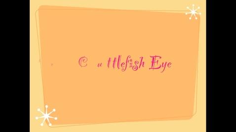 Thumbnail for entry Cuttlefish Eye