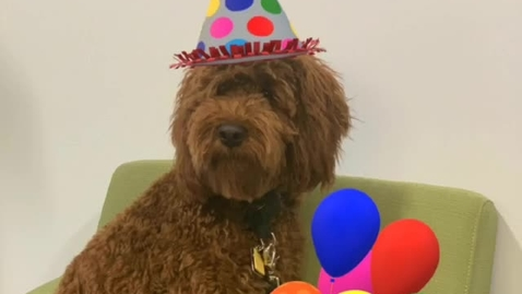 Thumbnail for entry Jack's Missing Birthdays Message