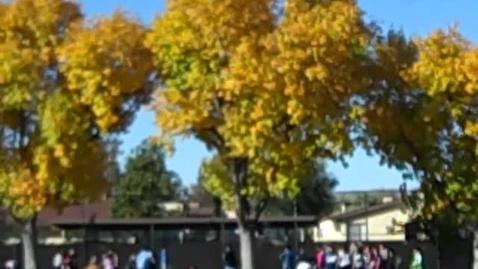 Thumbnail for entry Fall @ Edward Hyatt Elementary