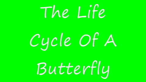 Thumbnail for entry The Life Cycle of a Butterfly 1