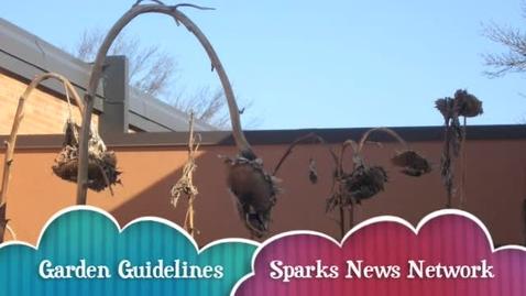 Thumbnail for entry School Garden Guidelines