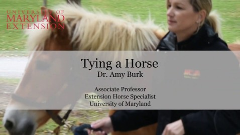 Thumbnail for entry How to Tie a Horse