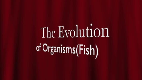 Thumbnail for entry Hunt Period 6 Evolution of Organisms