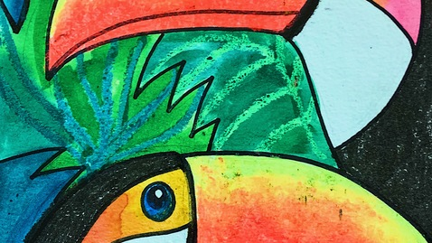 Thumbnail for entry Tropical Toucan Drawing