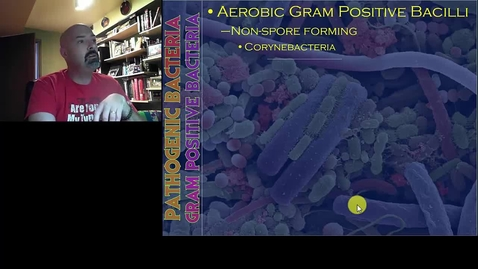 Thumbnail for entry Pathogenic Bacteria part 2 (HIM 205)