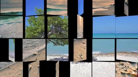 Thumbnail for entry Ocean Pollution