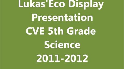 Thumbnail for entry A Shoreline Ecosystem Presentation