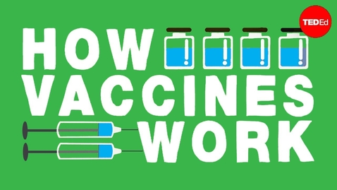 Thumbnail for entry How do vaccines work? - Kelwalin Dhanasarnsombut