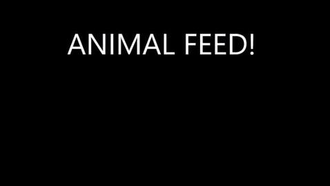 Thumbnail for entry AnimalFeed