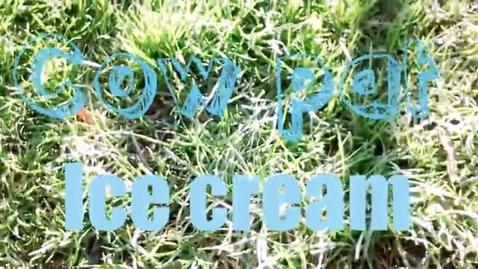Thumbnail for entry Cowpat Icecream