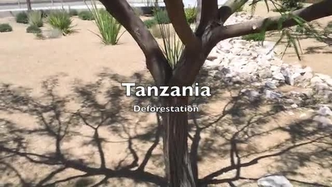 Thumbnail for entry Tanzania Deforestation PSA