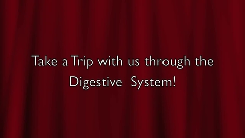 Thumbnail for entry Digestive System Journey