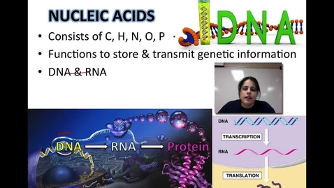 Thumbnail for entry Nucleic Acids & Proteins (Unit 1 - Video 5C)