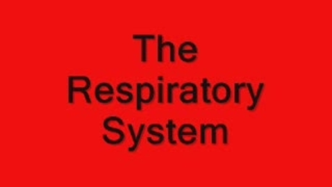 Thumbnail for entry Respiratory System