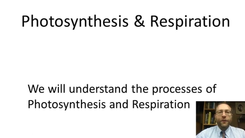 Thumbnail for entry Photosynthesis & Respiration