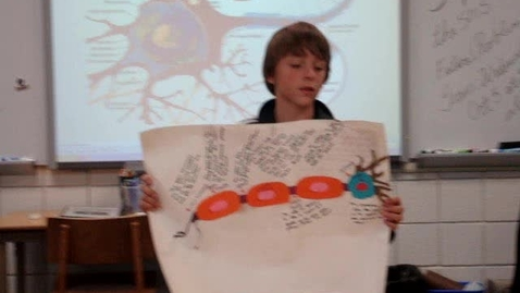 Thumbnail for entry Neuron Presentation Drew