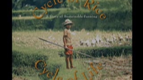 Thumbnail for entry CYCLE OF RICE, CYCLE OF LIFE part 1