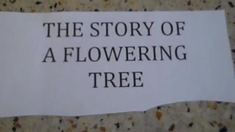 Thumbnail for entry Paperslide: Flowering Tree