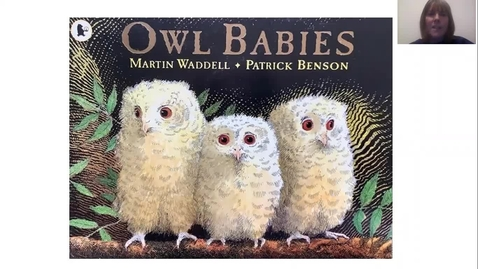 Thumbnail for entry Owl Babies read by Miss Donaghy