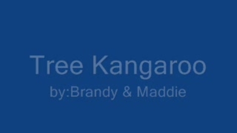 Thumbnail for entry Tree Kangaroo By: Brandy and Maddie