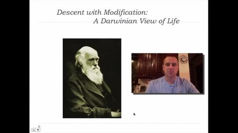 Thumbnail for entry Darwinian Evolution