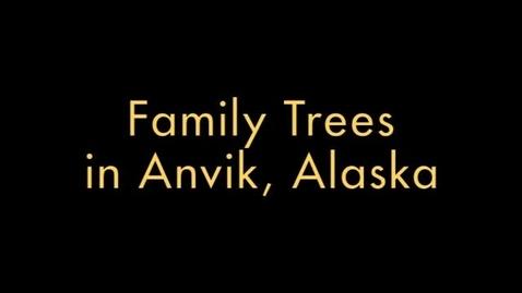 Thumbnail for entry family Trees in Anvik, Alaska