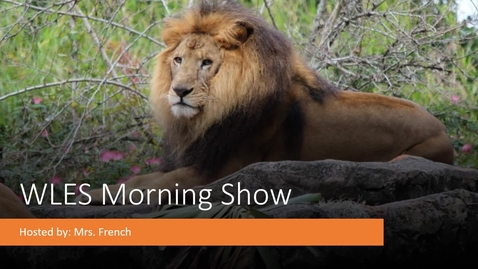 Thumbnail for entry May 18th Morning Show
