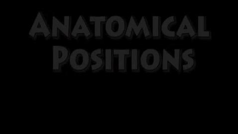 Thumbnail for entry Pandora-Gilboa Anatomy - Anatomical Positions