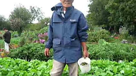 Thumbnail for entry Korean Gardens 13