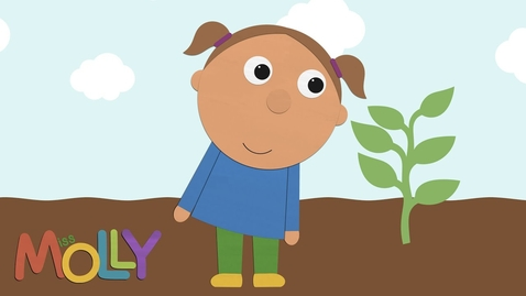 Thumbnail for entry How Does a Plant Grow? (Lifecycle of Plant) | Miss Molly Sing Along Songs | The ALPHABET Kids
