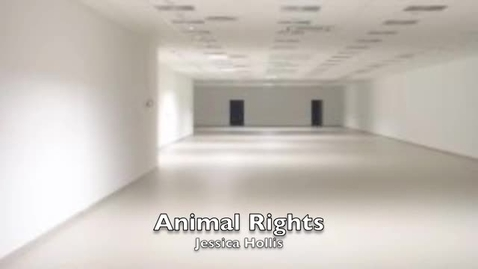 Thumbnail for entry Animal Rights